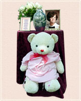 Diane's Urn and Cancer Bear
